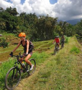 vélo dans les rizières Bali
